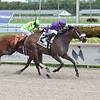 Heiressall wins the Sheer Drama Stakes Sunday, September 6, 2020 at Gulfstream Park. Photo: Coglianese Photos/Lauren King
