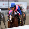 Arthur's Hope wins the 2020 Say Florida Sandy Stakes at Aqueduct<br /> Coglianese Photos/Elsa Lorieul