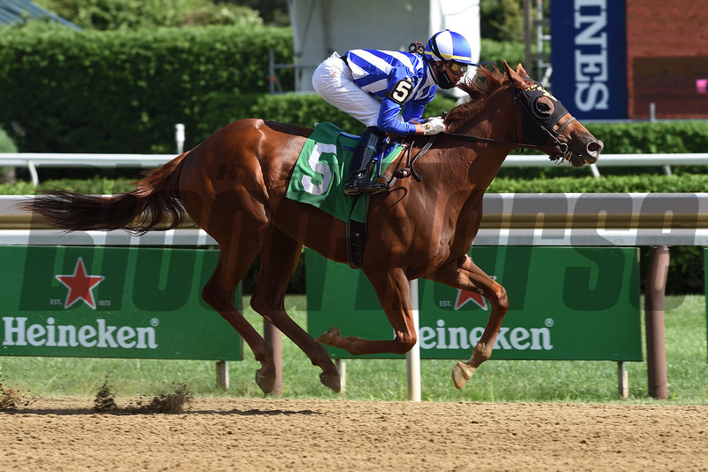 Red Ghost wins maiden special weight Sunday, August 30, 2020 at Saratoga Race Course. Photo: Coglianese Photos