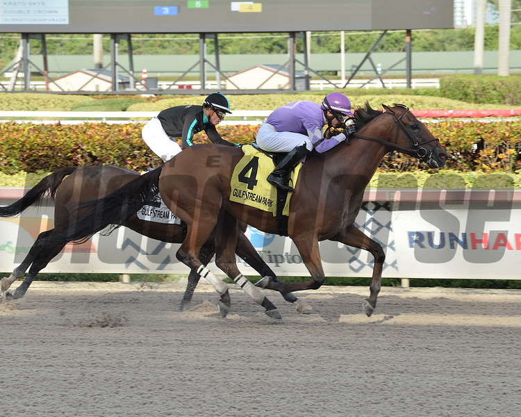 Cool Arrow wins the 2020 Smile Sprint Stakes at Gulfstream Park<br /> Coglianese Photos/Lauren King