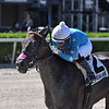Violent Times wins the 2020 Ana T. Stakes at Gulfstream Park<br /> Coglianese Photos/Ryan Thompson