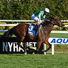 Illegal Smile wins the 2020 Stewart Manor Stakes at Aqueduct<br /> Coglianese Photos