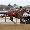 My My Michelle - Maiden Win, Aqueduct, January 31, 2020<br /> Coglianese Photos