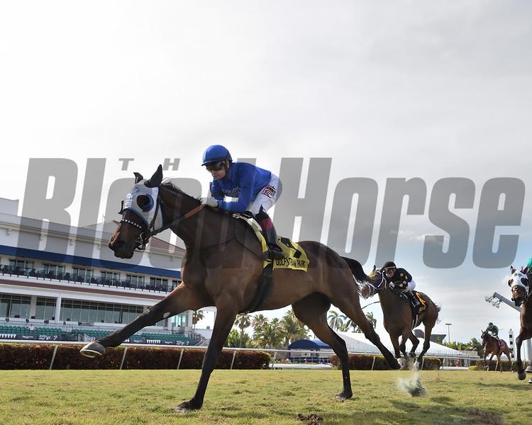 Micheline wins the 2020 Honey Ryder Stakes at Gulfstream Park<br /> Coglianese Photos/Lauren King