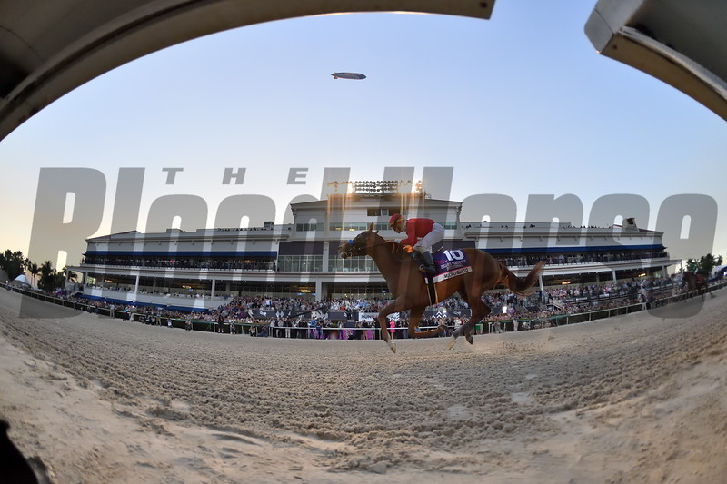 Mucho Gusto wins the 2020 Pegasus World Cup Invitational<br /> Coglianese Photos