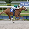 Tonalist's Shape wins the 2020 Hollywood Wildcat Stakes at Gulfstream Park<br /> Coglianese Photos/Lauren King