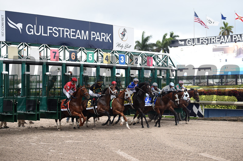 Tiz the Law wins the 2020 Holy Bull Stakes at Gulfstream Park. Photo: Coglianese Photos