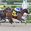 Mon Petit Chou - Maiden Win, Gulfstream Park, August 22, 2020<br /> Coglianese Photos/Lauren King