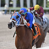 Flora Fantasy - AOC, Gulfstream Park, May 29, 2020<br /> Coglianese Photos/Ryan Thompson