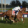 Spooky Channel wins the 2020 W. L. McKnight Stakes at Gulfstream Park<br /> Coglianese Photos/Lauren King