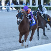 War Stopper - AOC, Gulfstream Park, December 9, 2020<br /> Coglianese Photos/Ryan Thompson
