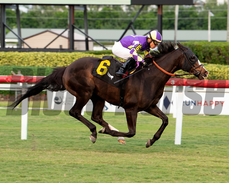 Silenced - AOC, Gulfstream Park, December 4, 2020<br /> Coglianese Photos/Ryan Thompson
