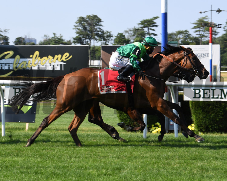 Fifty Five wins the 2020 Mount Vernon Stakes at Belmont Park<br /> Coglianese Photos/Susie Raisher