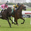 Director's Cut - Maiden Win, Gulfstream Park, July 23, 2020<br /> Coglianese Photos/Ryan Thompson