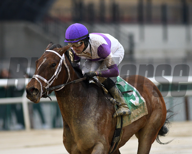Cash Offer wins the 2020 La Verdad Stakes at Aqueduct<br /> Coglianese Photos/Chelsea Durand
