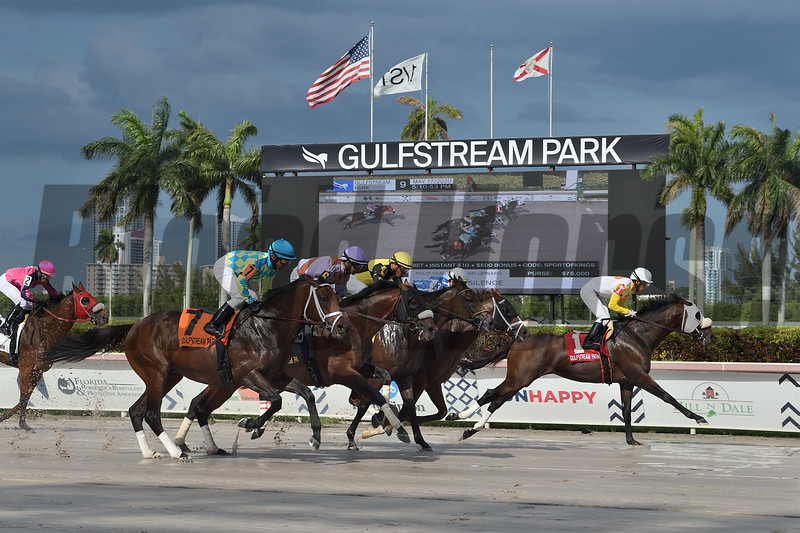 Just Whistle wins the Sunday Silence Stakes Sunday, May 17, 2020 at Gulfstream Park. Photo: Coglianese Photos/Lauren King