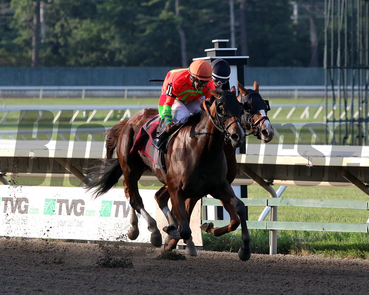 Horologist with Joe Bravo win the 74th Running of the Molly Pitcher Stakes (GIII) at Monmouth Park on July 18, 2020. Photo By: Chad B. Harmon