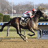 Risk Taking wins maiden special weight Sunday, December 13, 2020 at Aqueduct. Photo: Coglianese Photos