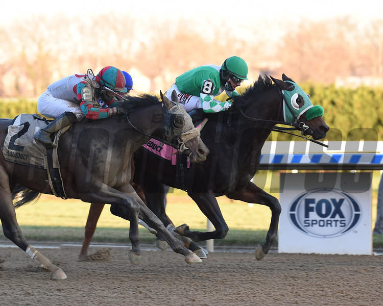 Hold the Salsa wins the New York Stallion Series Stakes Sunday, December 6, 2020 at Aqueduct. Photo: Coglianese Photos
