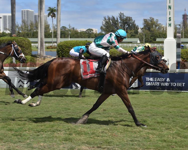 Highland Glory wins the 2020 Sanibel Island Stakes at Gulfstream Park<br /> Coglianese Photos/Lauren King