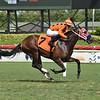 King Buddha - Maiden Win, Gulfstream Park, September 20, 2020<br /> Coglianese Photos/Lauren King