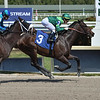 Candy Machine - Maiden Win, Gulfstream Park, April 3, 2020<br /> Coglianese Photos/Lauren King