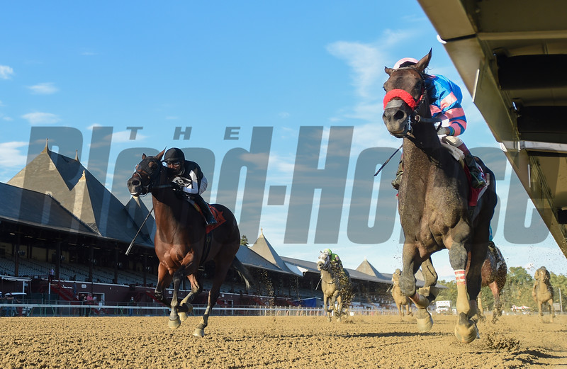 Come Dancing with jockey Irad Ortiz Jr. wins the Grade 2 Honorable Miss at the Saratoga Race Course Sunday Sept. 6, 2020 in Saratoga Springs, N.Y.  Photo by Tim Lanahan