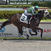 Big Daddy Dave - Maiden Win, Gulfstream Park, May 30, 2020<br /> Coglianese Photos/Lauren King