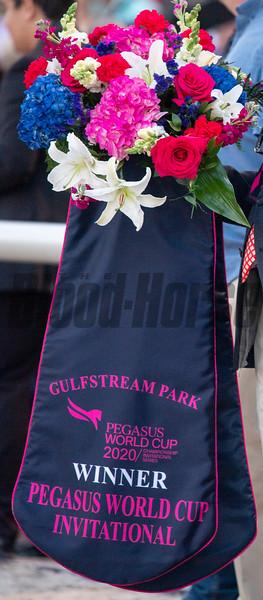 Mucho Gusto with Irad Ortiz up Wins The Pegasus World Cup 20020     @ Gulfstream Park.  Fl   Jan25 2020<br />    ©Joe DiOrio/Winningimages.biz