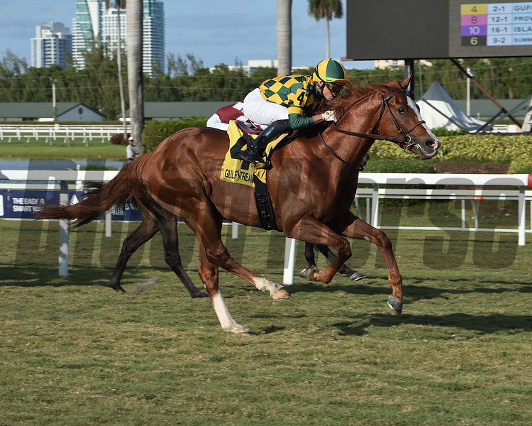Gufo wins the 2020 English Channel Stakes at Gulfstream Park <br /> Coglianese Photos/Lauren King