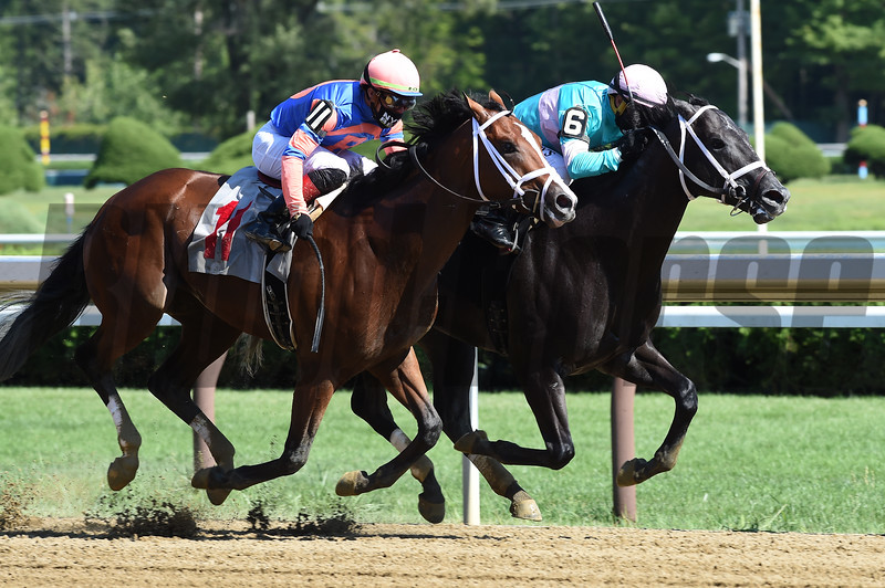 Nautilus wins maiden special weight Saturday, August 22, 2020 at Saratoga Race Course. Photo: Coglianse Photos