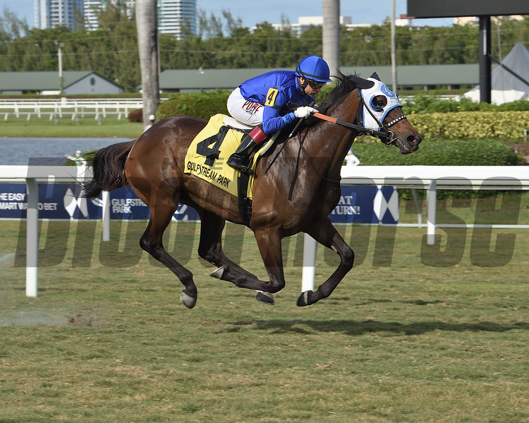 Micheline wins the 2020 Honey Ryder Stakes at Gulfstream Park <br /> Coglianese Photos/Lauren King