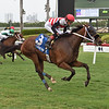 Kelsey's Cross wins the 2020 Ginger Punch Stakes at Gulfstream Park<br /> Coglianese Photos/Lauren King