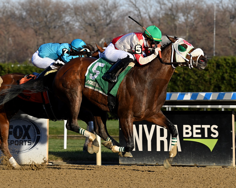 Share the Ride wins the Fall Highweight Handicap Sunday, November 29, 2020 at Aqueduct. Photo: Coglianese Photos/Joe Labozzetta