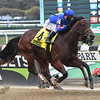 No Mo' Spending wins the 2020 Joseph A. Gimma Stakes at Belmont Park<br /> Coglianese Photos