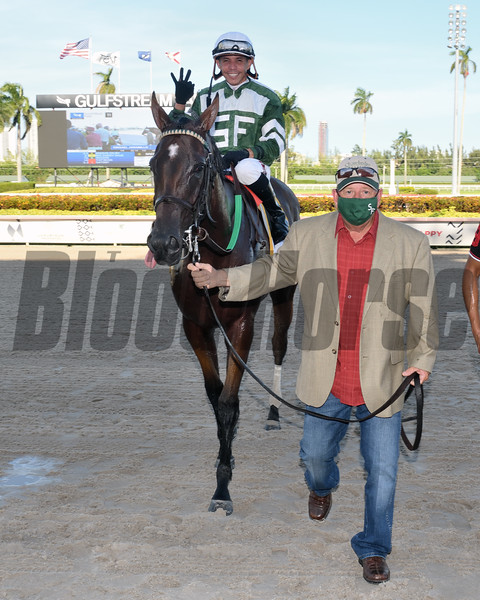 Breeze On By wins the 2020 FTBOA Florida Sire Affirmed Stakes at Gulfstream Park<br /> Coglianese Photos/Lauren King