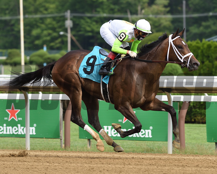 Lucifers Lair wins maiden special weight July 19, 2020 at Saratoga. Photo: Coglianese Photos