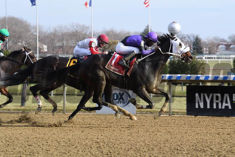 Lucky Move wins the Bay Ridge Stakes Sunday, December 13, 2020 at Aqueduct. Photo: Coglianese Photos