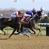 Lucky Move wins the Bay Ridge Stakes Sunday, December 13, 2020 at Aqueduct. Photo: Coglianese Photos