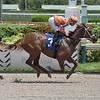 Starship Voyager wins a maiden special weight Sunday, August 23, 2020 at Gulfstream Park. Photo: Coglianese Photos/Lauren King