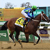 Jackie's Warrior wins the 2020 Champagne Stakes at Belmont Park<br /> Coglianese Photos/Janet Garaguso