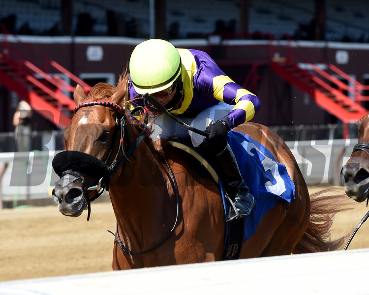 Irish Constitution - Maiden Win, Saratoga, July 24, 2020<br /> Coglianse Photos/Chelsea Durand