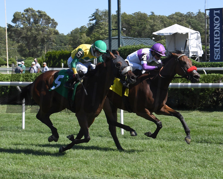 Dipping In - Maiden Win, Saratoga, August 26, 2020<br /> Coglianese Photos