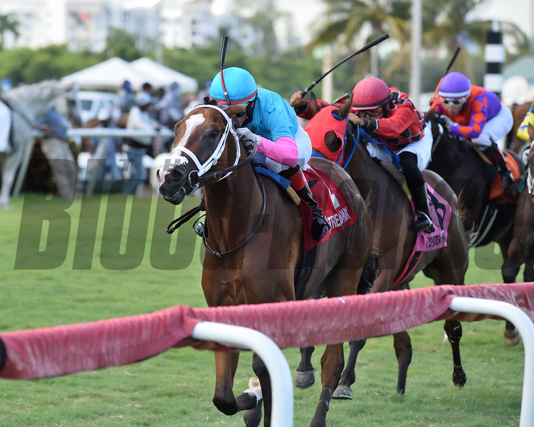 Hot Blooded wins the 2020 Proud Man Stakes at Gulfstream Park <br /> Coglianese Photos/Ryan Thompson