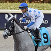 Silver Kitten - AOC, Gulfstream Park, March 27, 2020<br /> Coglianese Photos/Ryan Thompson