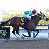 Diamond King wins the 2020 Stymie Stakes at Aqueduct.<br /> Coglianese Photos/Viola Jasko