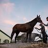 Tax - Morning - Palm Meadows - 011320. Photo: Joe DiOrio