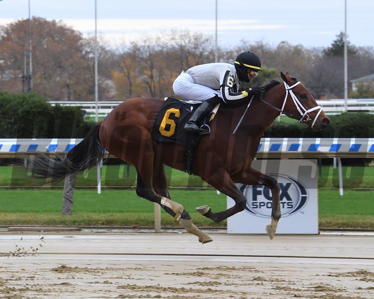 Uno - Maiden Win, Aqueduct, November 12, 2020<br /> Coglianese Photos/Chelsea Durand