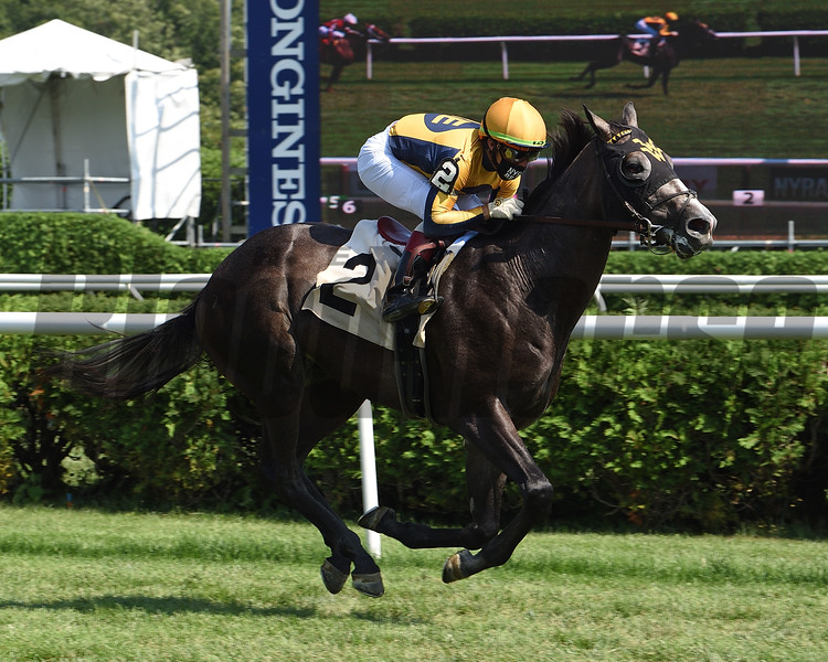 Outadore wins a maiden special weight Sunday, July 26, 2020 at Saratoga Race Course. Photo: Coglianese Photos/Chelsea Durand