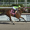 Sound Machine wins the 2020 Glitter Woman<br /> Coglianese Photos/Lauren King